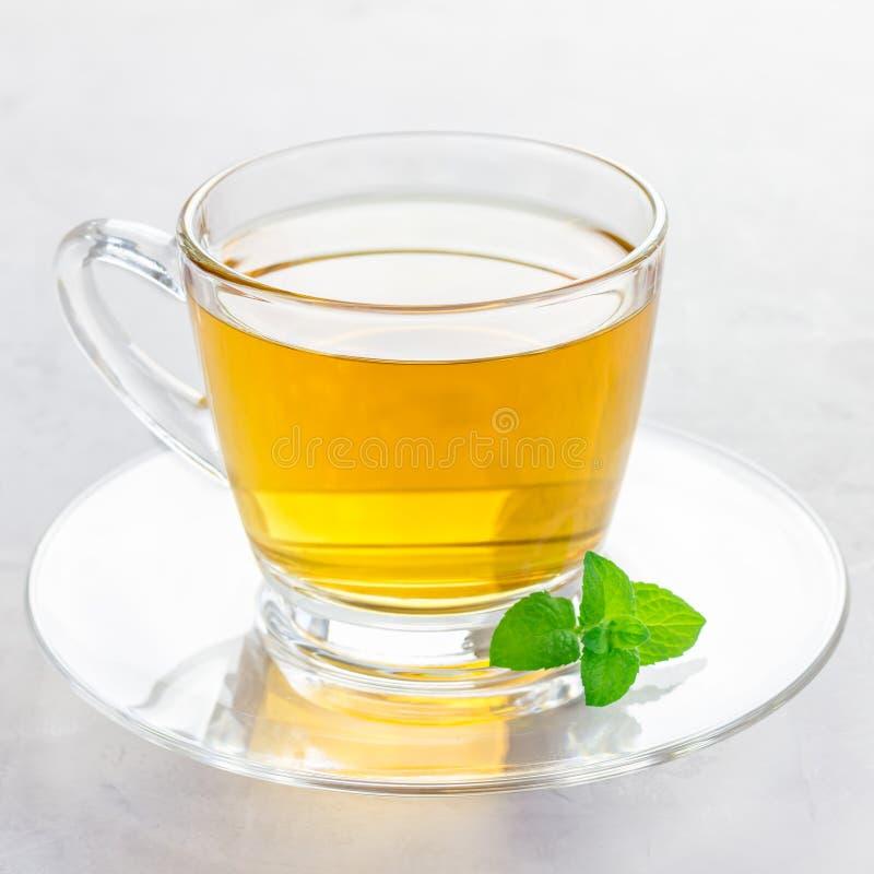 Ziołowa nowa herbata w szklanej filiżance z świeżą miętówką na tle, kwadratowy format zdjęcia royalty free