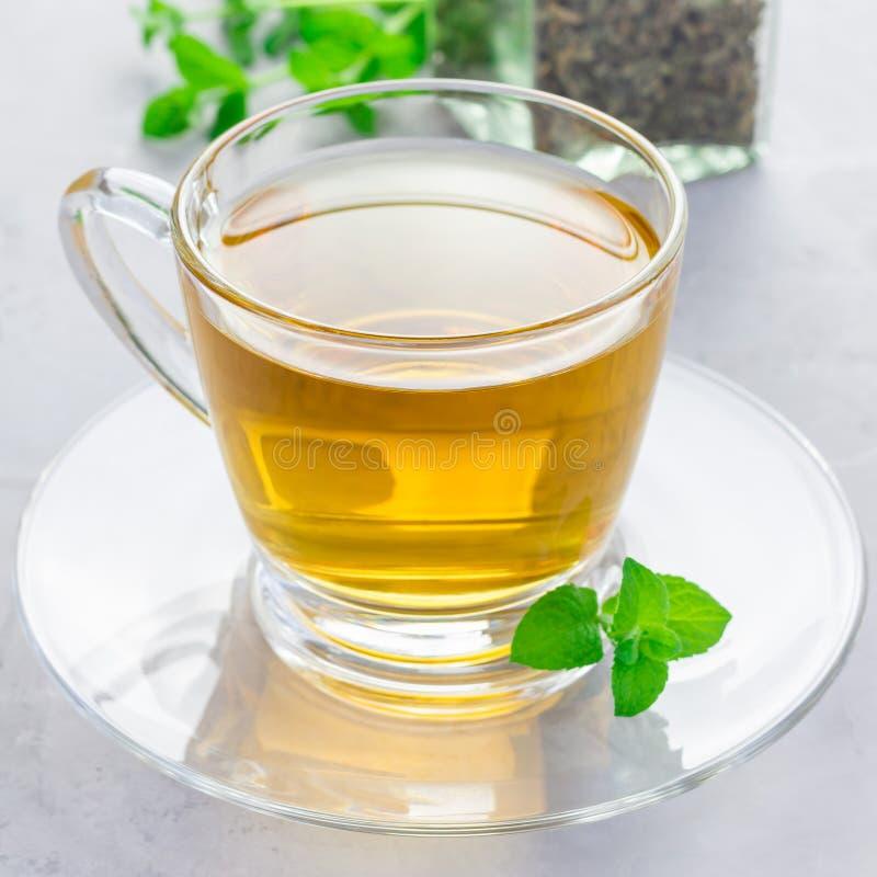 Ziołowa nowa herbata w szklanej filiżance z świeżą miętówką na tle, kwadratowy format obrazy stock