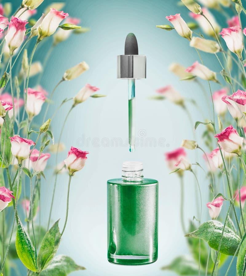 Ziołowa twarzowa serum butelka z pipetą i kwiatami plats na błękitnym tle fotografia stock