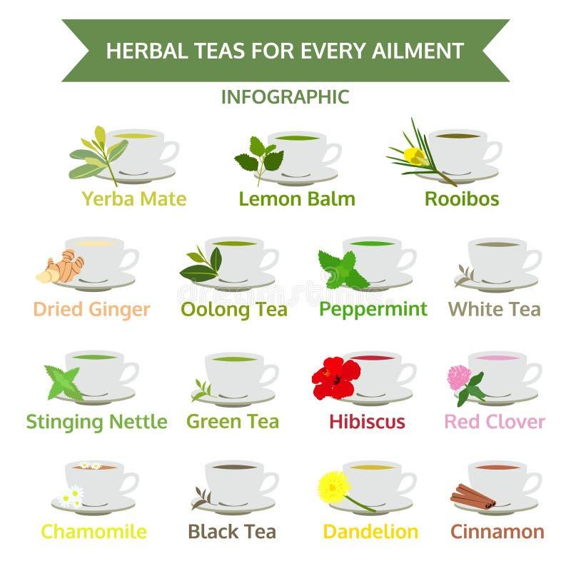 Ziołowe herbaty dla dolegliwości, zdrowy jedzenie, zielarski wektor ilustracja wektor
