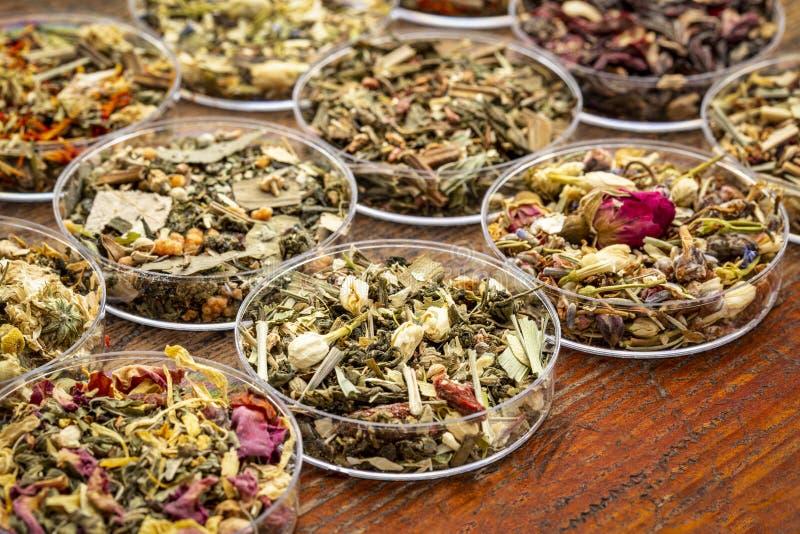 Ziołowej herbaty sampler kolekcja obraz royalty free