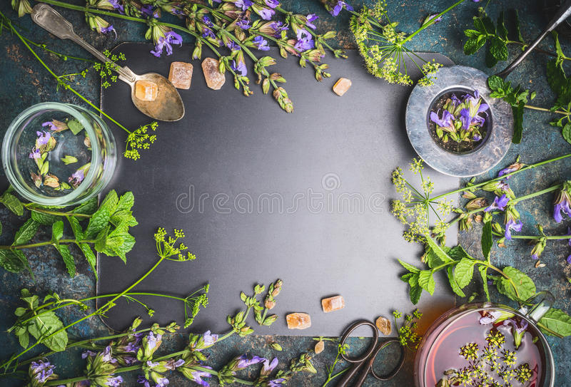 Ziołowej herbaty składniki z różnorodnymi świeżymi ziele, kwiaty, filiżanka herbata i narzędzia na czarnym chalkboard tle, obrazy royalty free