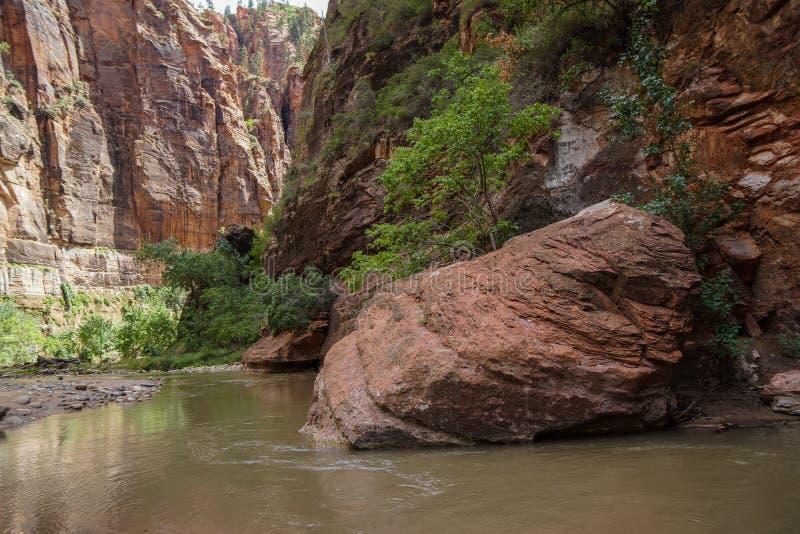 zion峡谷的狭窄 免版税库存图片