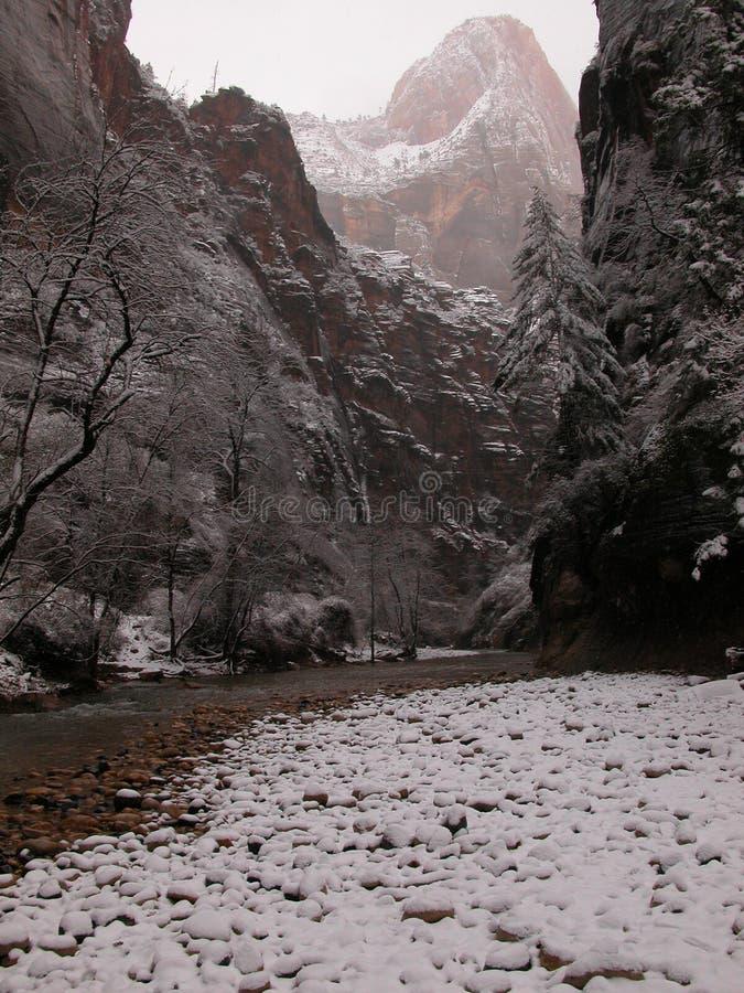 Zion туманнейших узких частей снежное Стоковое Изображение
