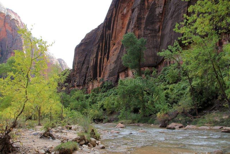 Zion Canyon fotografie stock libere da diritti