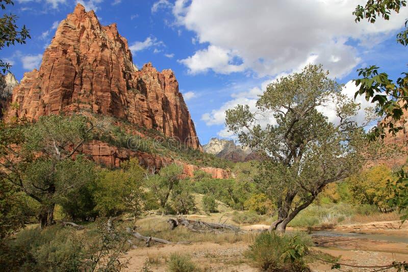 Zion Canyon immagine stock libera da diritti