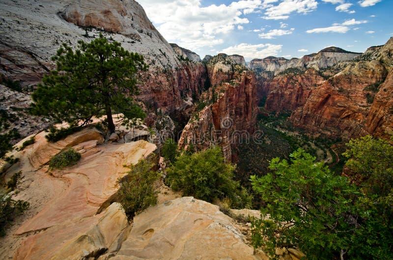 Zion Canyon como visto dos anjos que aterram em Zion National Park imagens de stock