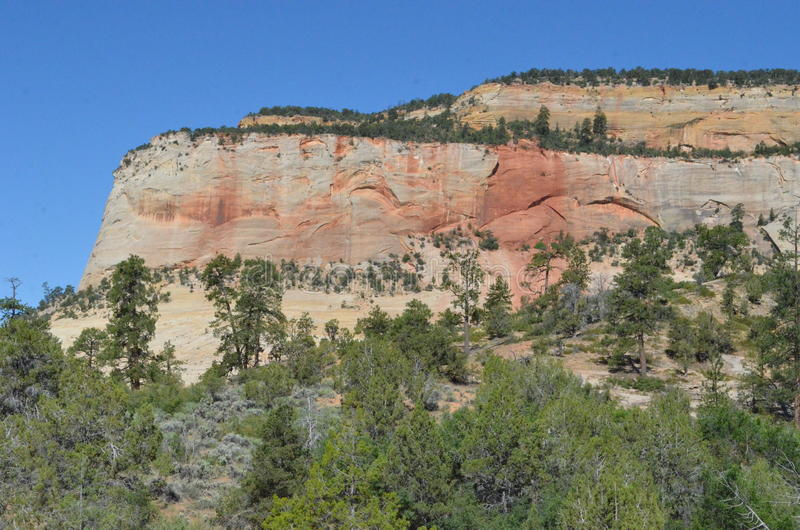 Zion canyon nature rocks and trees royalty free stock images