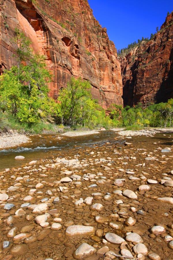 zion för nationalparkflodoskuld arkivbild