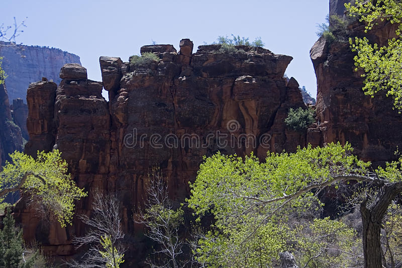 Download Zion National Park. stock photo. Image of formation, vacation - 11374192