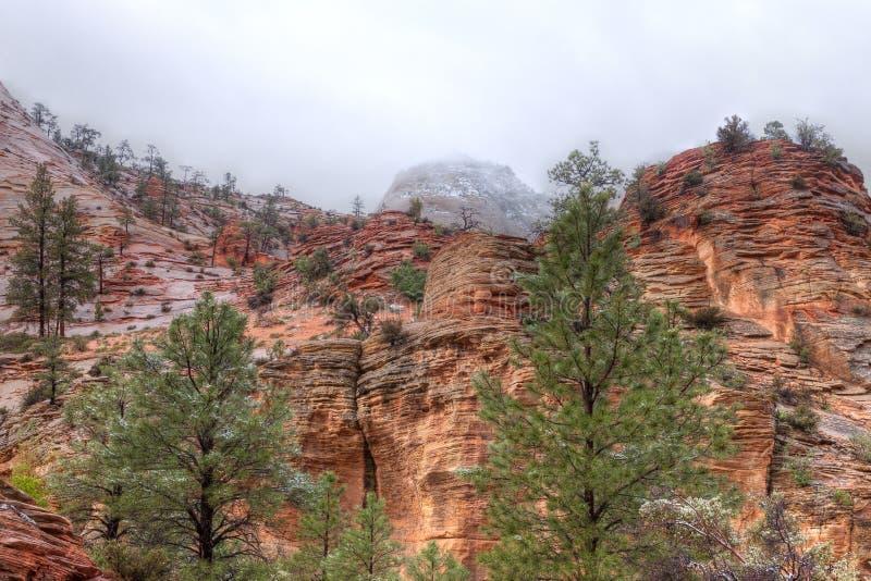 Zion National Park stock foto's