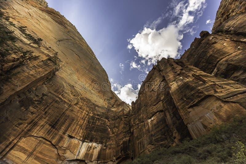 Zion National Park royalty-vrije stock afbeeldingen