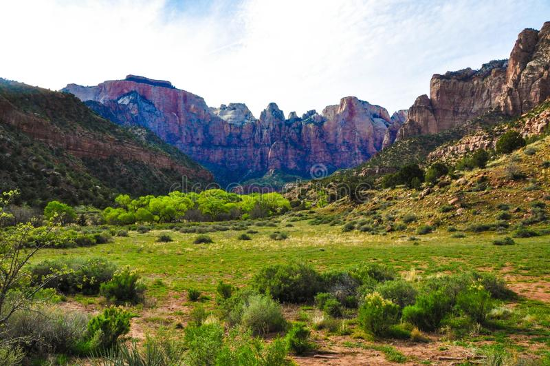 Zion National Park fotografie stock libere da diritti