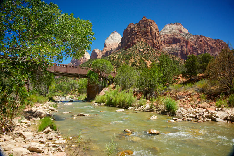 Zion National Park's Virgin River. Trees, bushes, and shrubs grow alongside the Virgin River in Zion National Park stock images