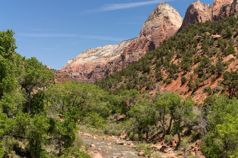Zion National Park, Utá fotografia de stock royalty free