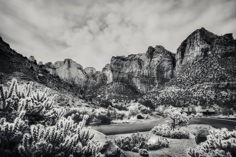 Zion National Park View en noir et blanc photo stock