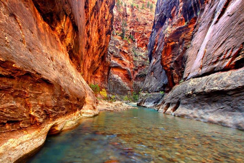 Zion National Park Virgin River arkivbild