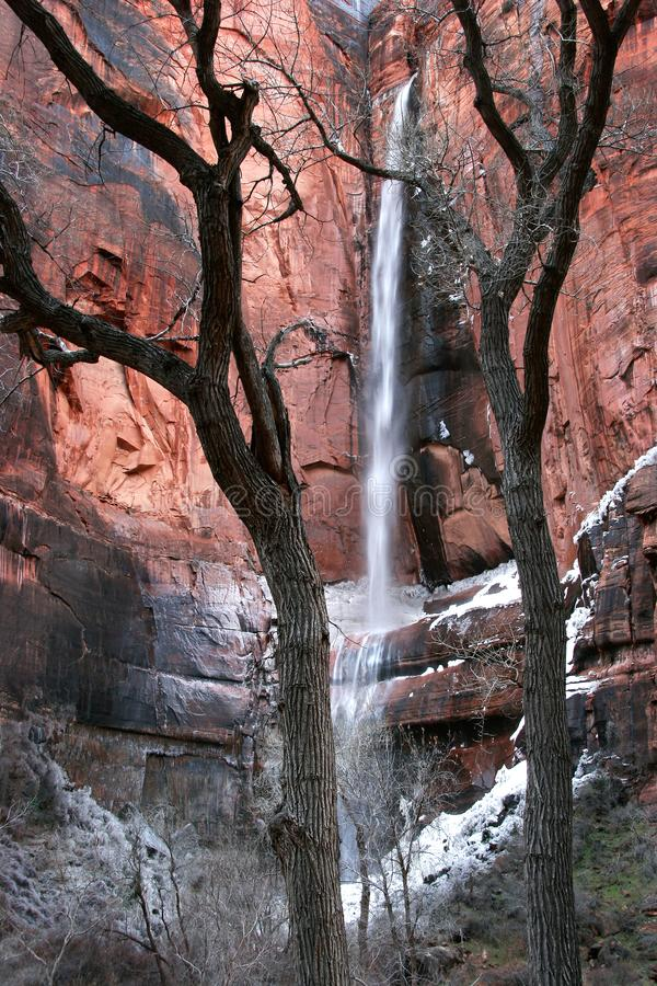 Zion National Park Waterfall stock foto's