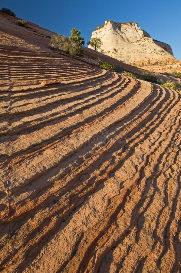 Zion Nationalpark stockfotografie