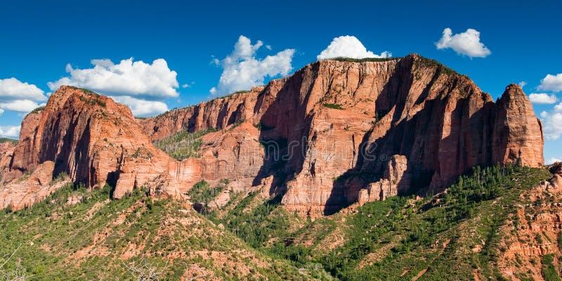 Zion Nationalpark kolob Schlucht lizenzfreie stockfotografie