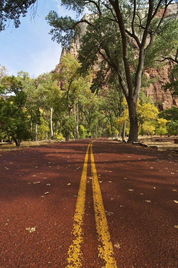 Zion Nationalpark-Straße stockbilder