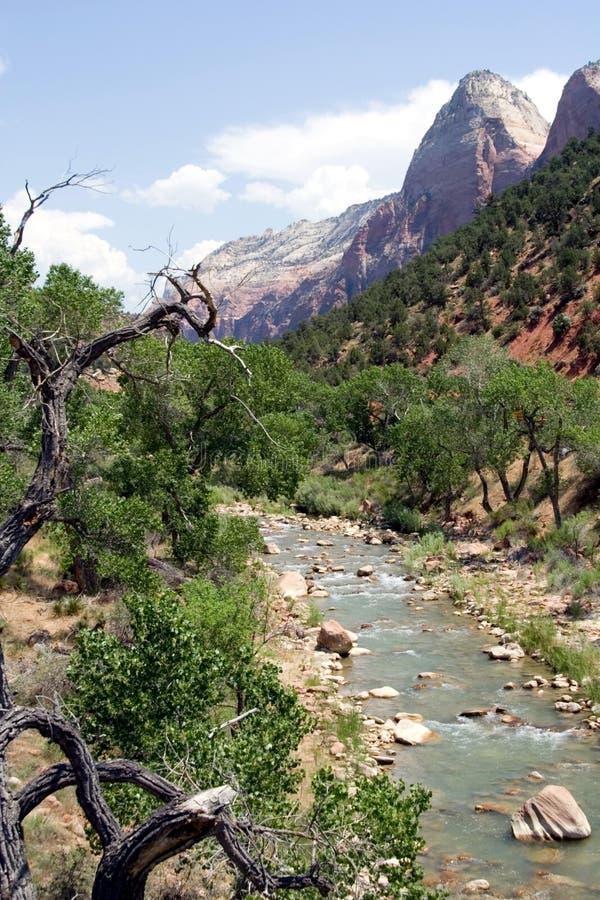 Zion Nationalpark, Utah lizenzfreie stockfotos