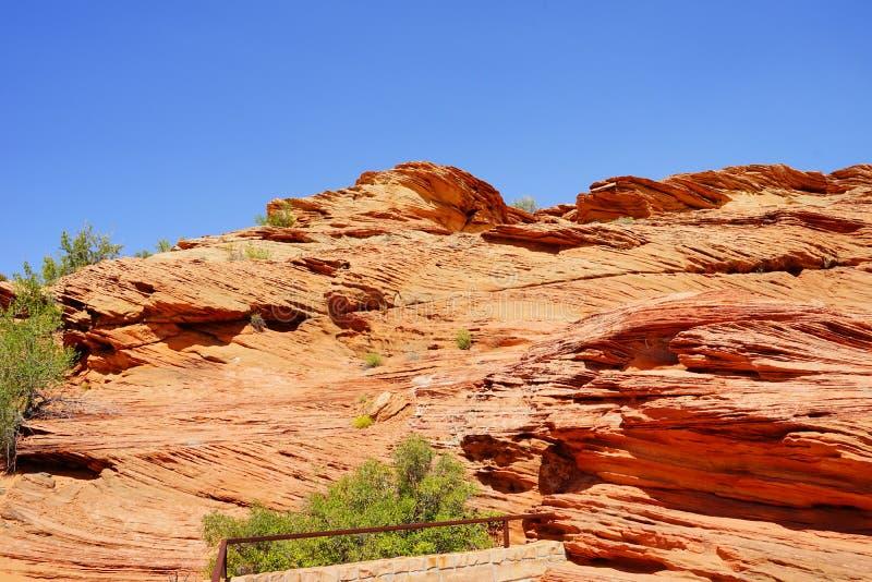 Zion Nationalparklandschaft stockbilder