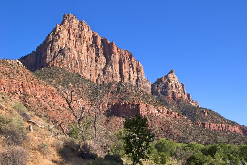 Zion NP images stock