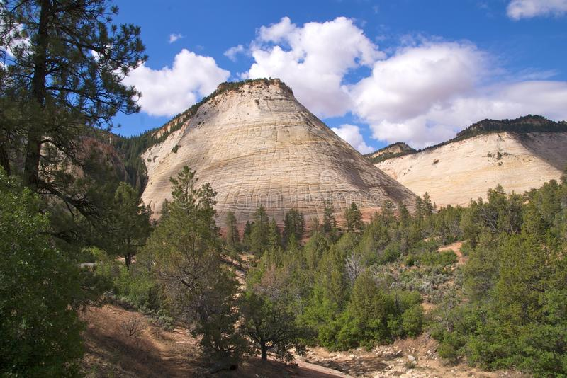 Zion NP Checkerboard Mesa royalty free stock photography