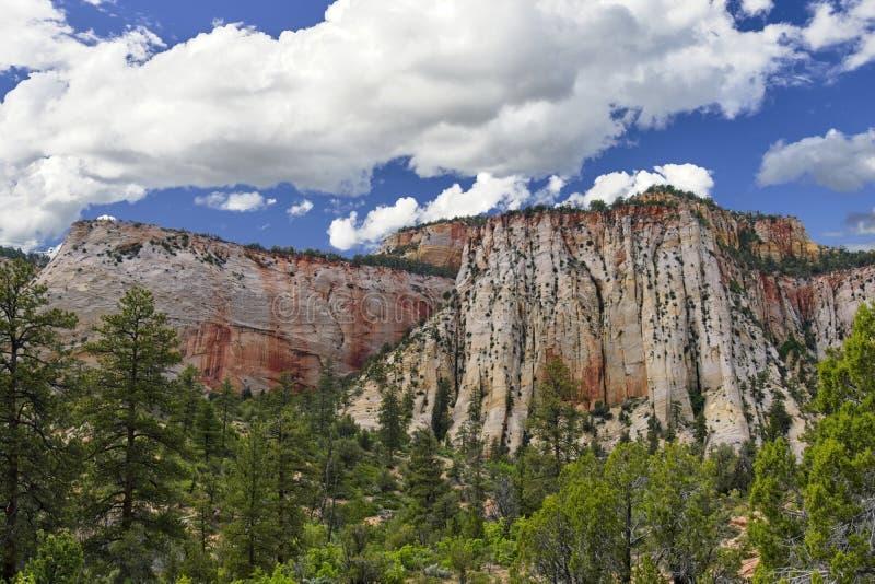 Zion park narodowy w stanie Utah obraz royalty free