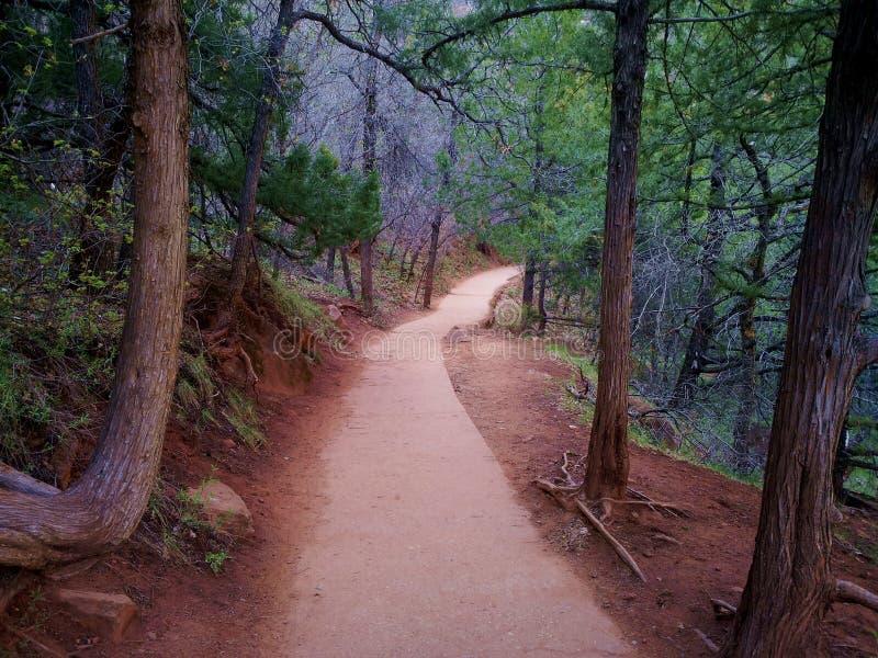 Zion Pathway con terra rossa fotografia stock libera da diritti