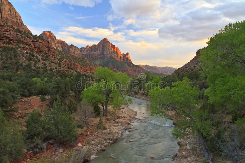 Download Zion Sunset And Cottonwoods Stock Photo - Image: 24745184