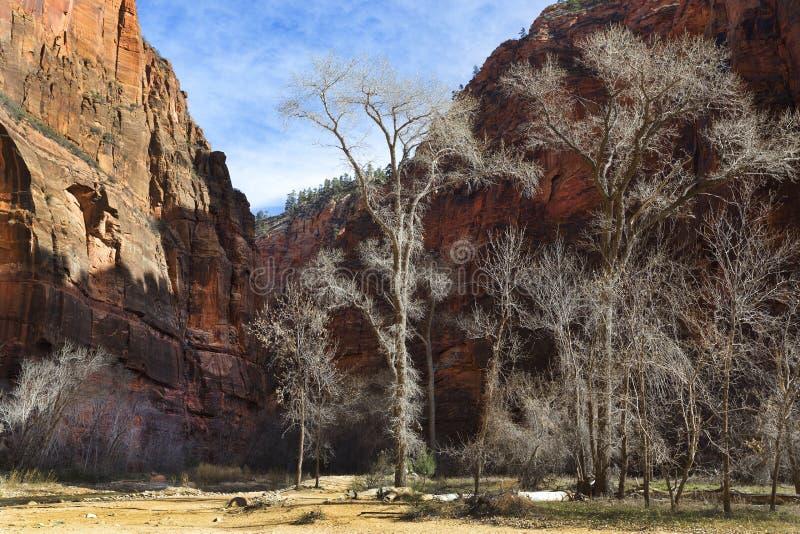 zion Utah parku narodowego zdjęcie stock