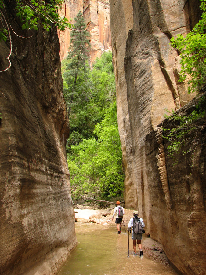 Zion Virgin Narrows hikers royalty free stock images