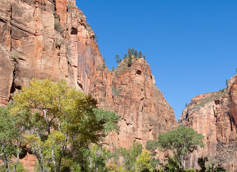 Download Zion Walls stock photo. Image of colorful, canyon, season - 33536630
