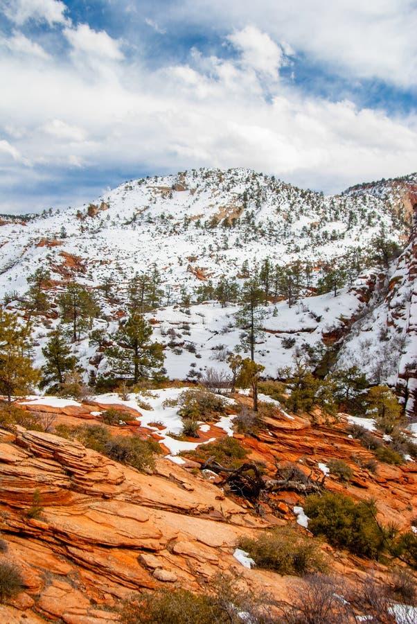 Zion In Winter photos libres de droits