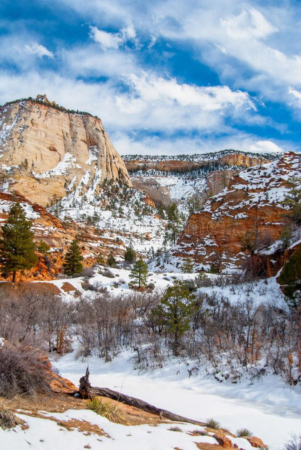 Zion In Winter images stock