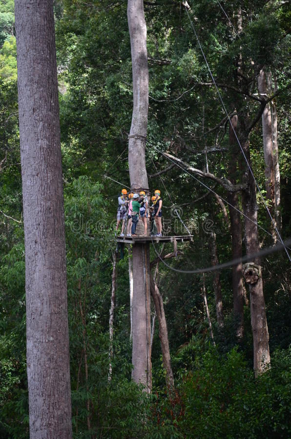 Zip line royalty free stock images