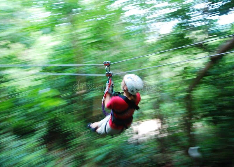 Download Zip Line In Jamaica stock image. Image of woman, tourist - 12429653