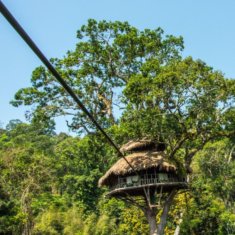 Zip line into jungle tree house stock photography