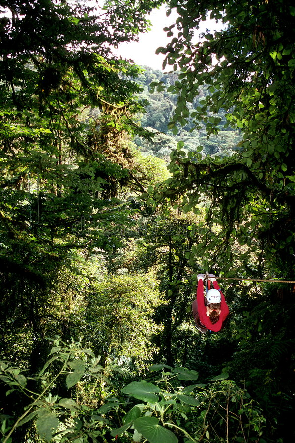 Ziplining in rain forest stock images