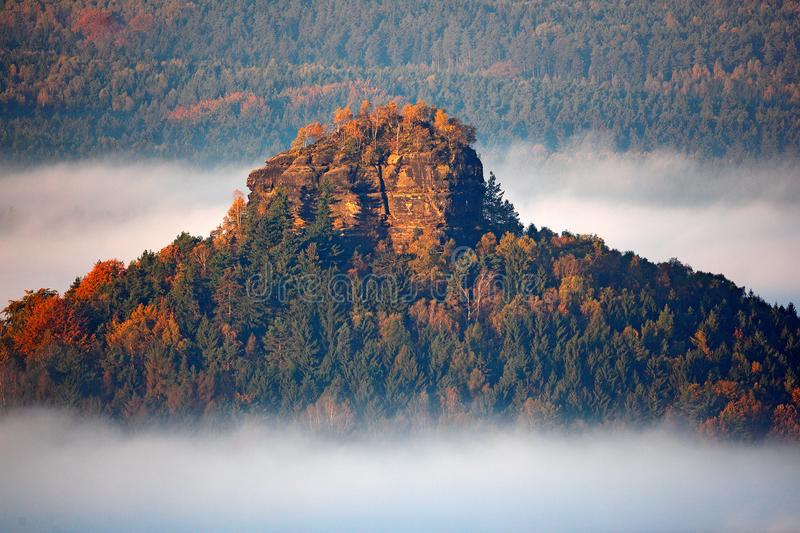 Zirkelstein with autumn trees in the fog clouds, white waves, foggy morning in a fall valley of Saxony Switzerland, Germany. Hill stock photos
