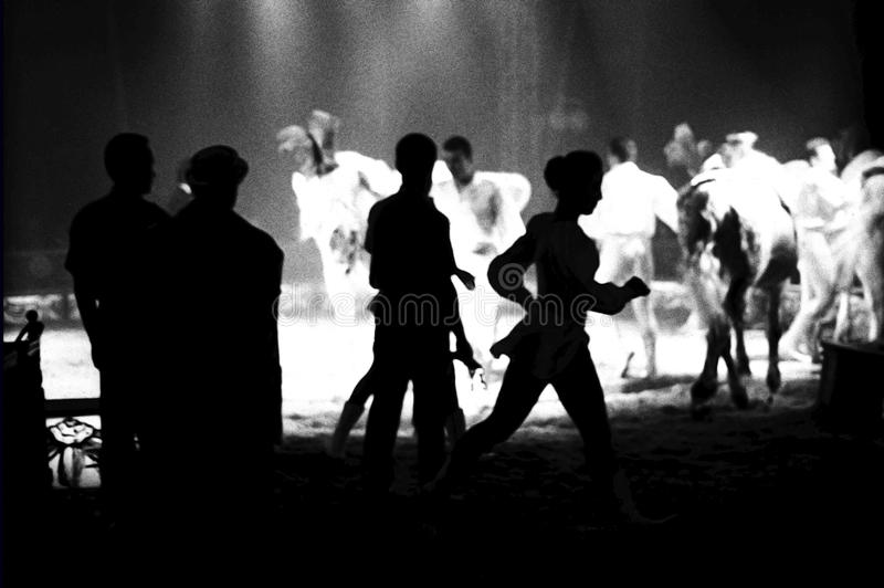 Zirkus Medrano - Cirque Medrano stockbild