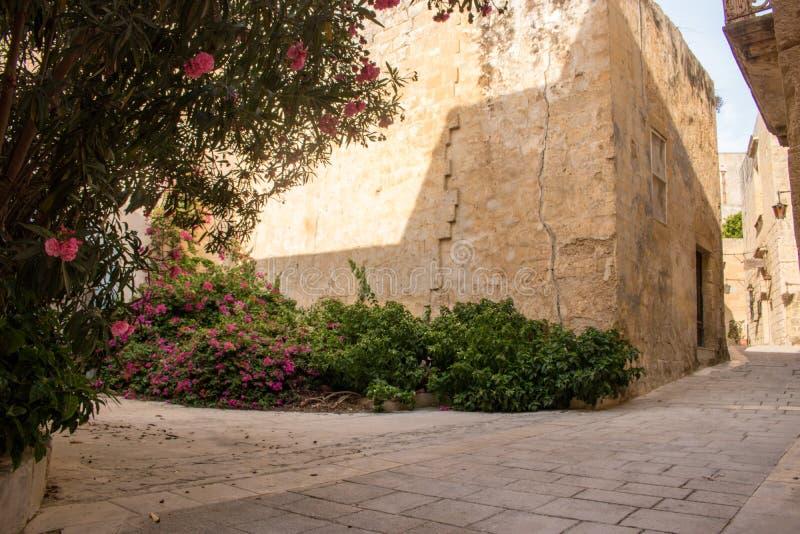 Zitadelle von Mdina, Malta lizenzfreie stockfotos