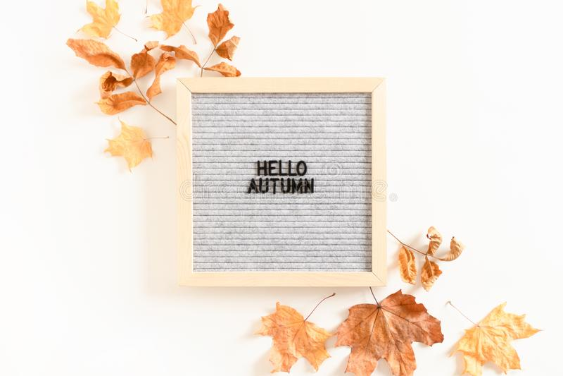 Zitathallo Herbst lizenzfreie stockfotos