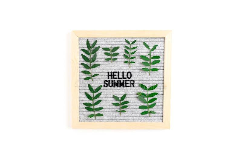 Zitieren Sie - hallo Sommer Letterboard und Pistazienniederlassungen lizenzfreies stockfoto