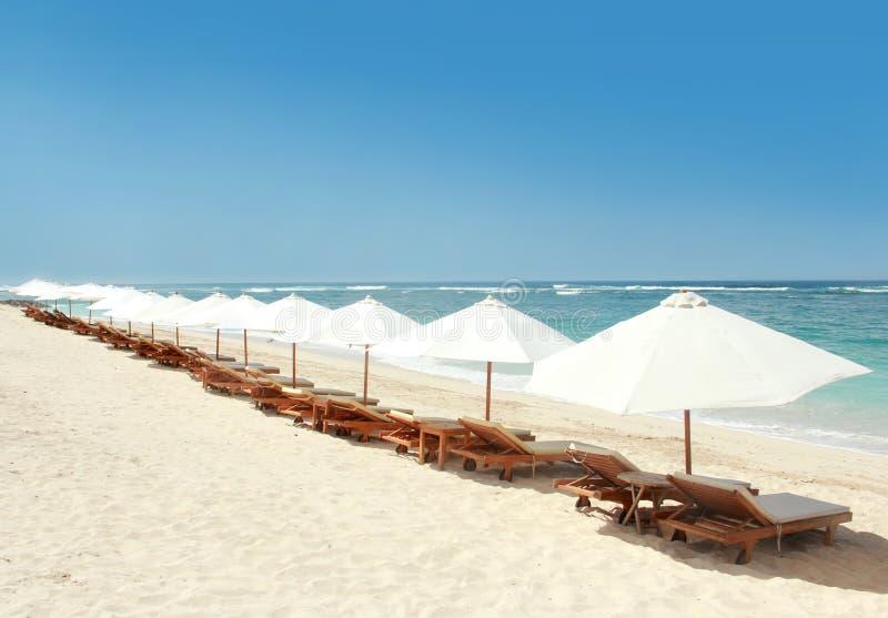 Zitkamerstoelen en paraplu's bij het strand stock afbeelding