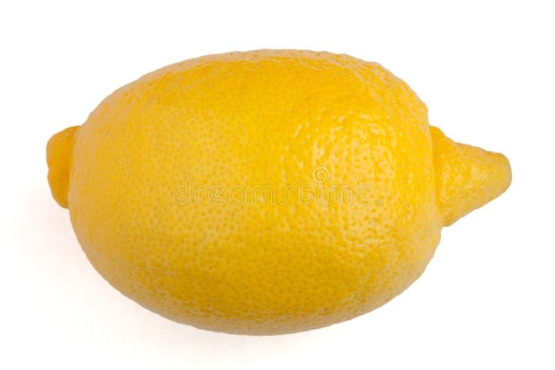 Zitrone auf weißem Hintergrund stockbild