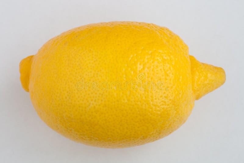 Zitrone auf weißem Hintergrund lizenzfreie stockfotografie