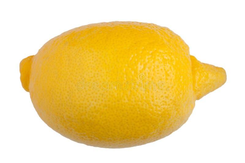 Zitrone auf weißem Hintergrund lizenzfreie stockbilder